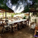 Les Palmiers Chez Neji et Catherine djerba restaurant